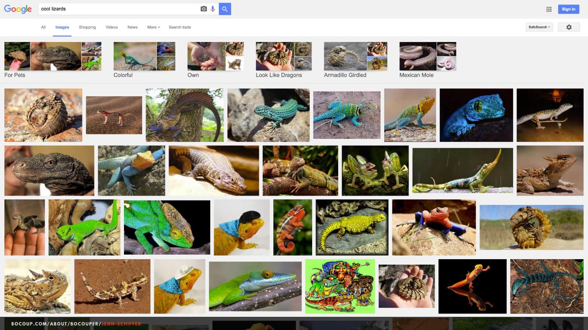 "Screenshot of the Google Image search results page for ""cool lizards."" Many lizards are pictured, all of them inarguably cool."